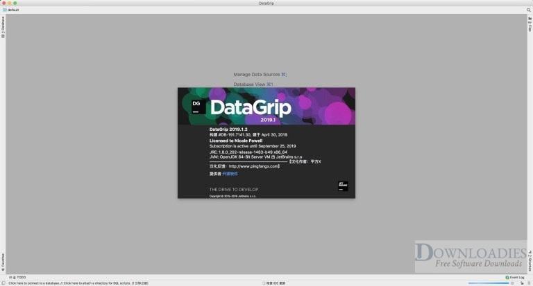JetBrains-DataGrip-2019-for-Mac-Downloadies