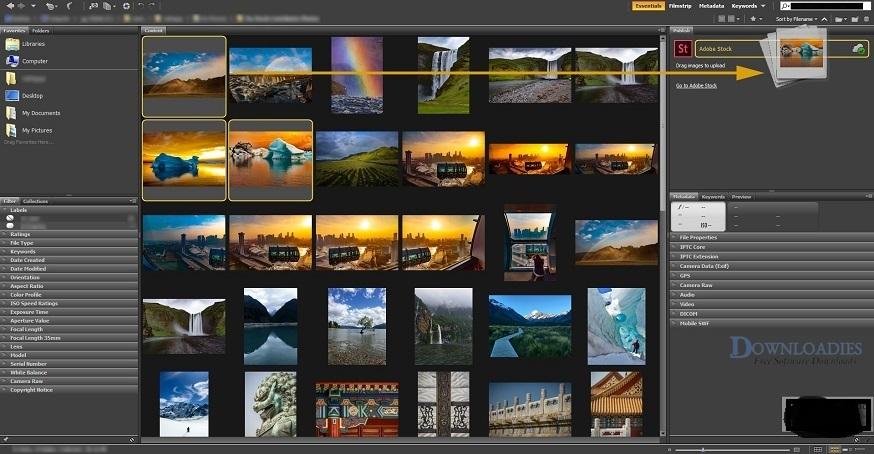 Adobe-Master-Collection-CC-2019