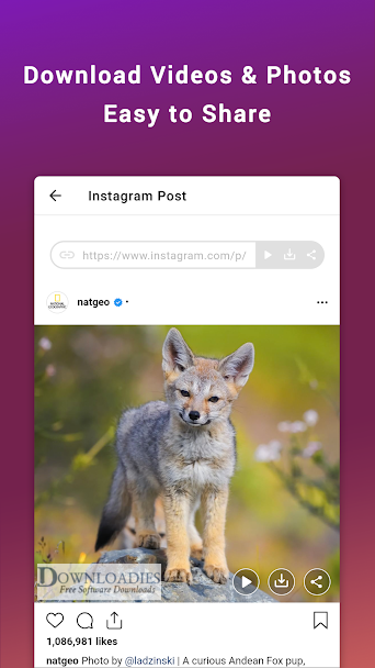 Friendly-for-Instagram-v1.0.6-APK