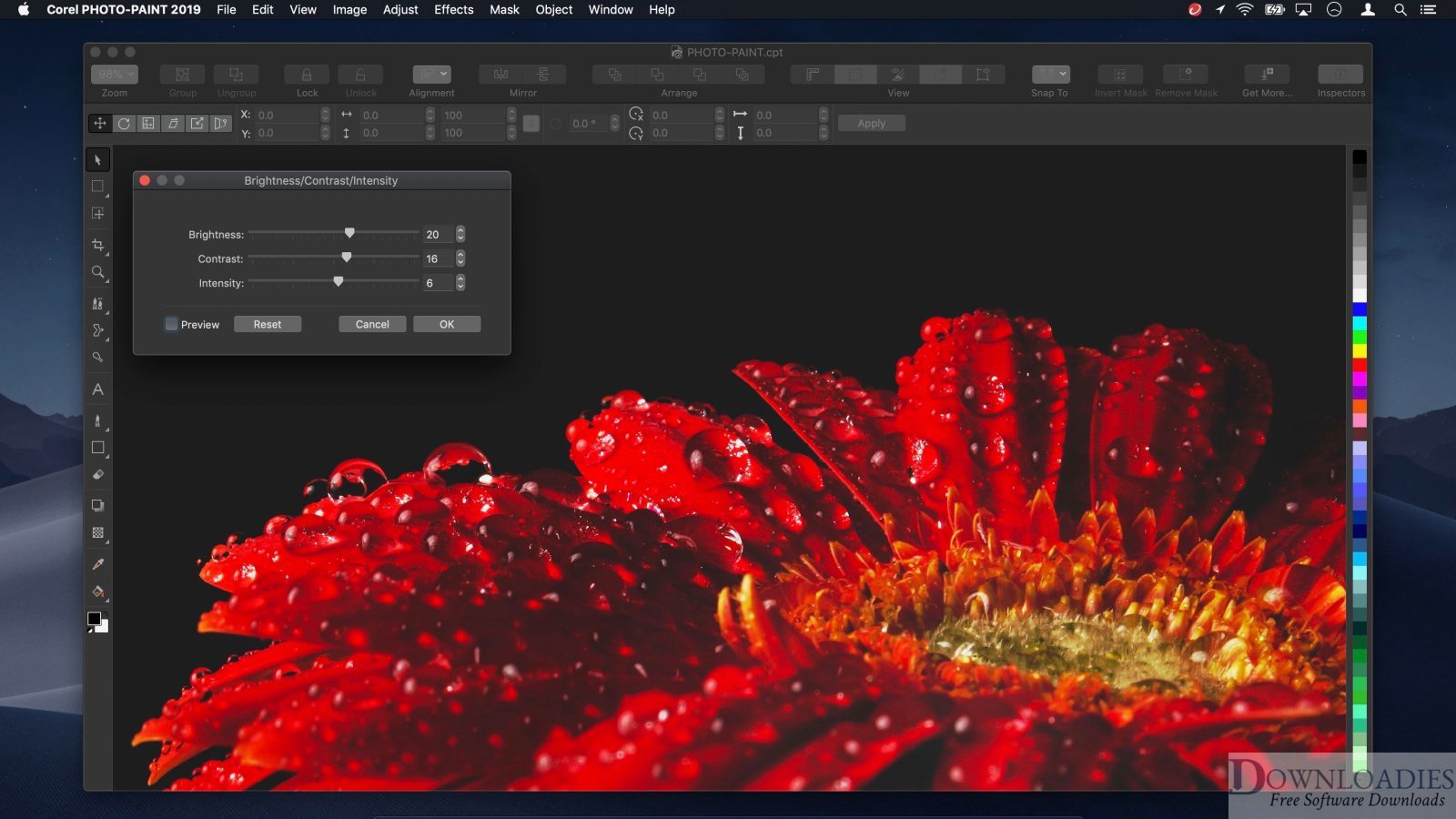 Corel Painter 2020 v20.0 for Mac download free