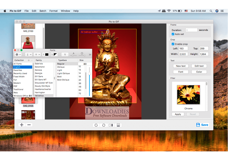 Picture-GIF-1.4-for-Mac-Free-Download