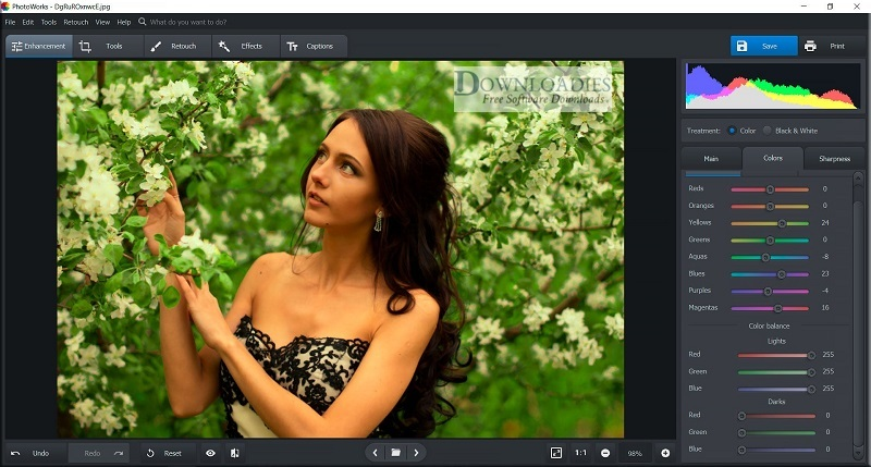 Portable-AMS-Software-PhotoWorks-6.0-Direct-Download