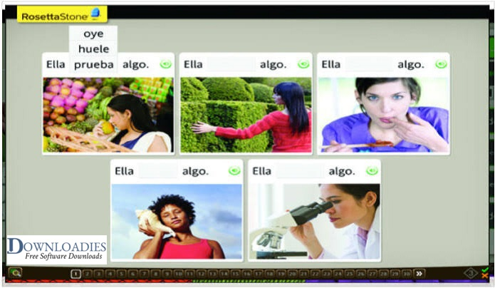 Free Rosetta Stone 5.0.37 Languages Learning download for Mac downloadies