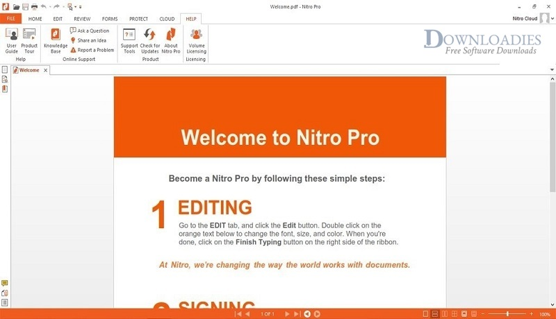 Nitro-Pro-13.2+Portable-Downloadies.com