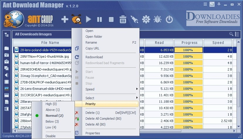 Portable-Ant-Download-Manager-2019-v1.13-Downloadies.com
