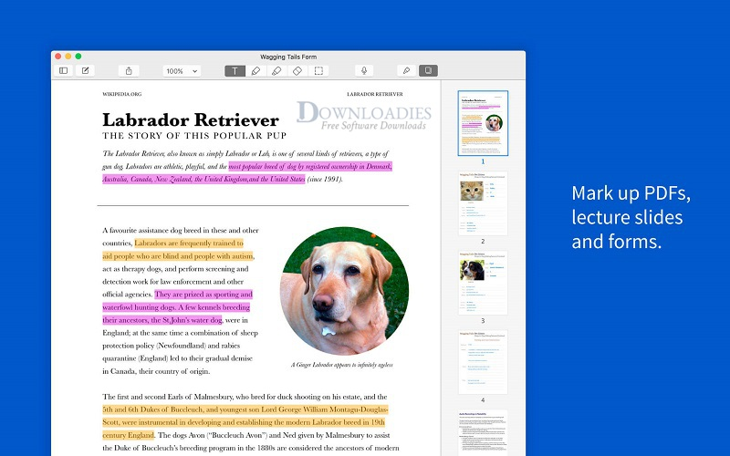 Notability-4.1.3-for-Mac-Free-Downloadies