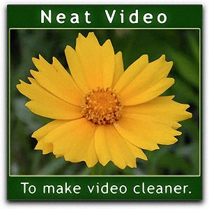 Download-Neat-Video-Pro-for-FCPX-Motion-5-for-Mac-Free-Downloadies