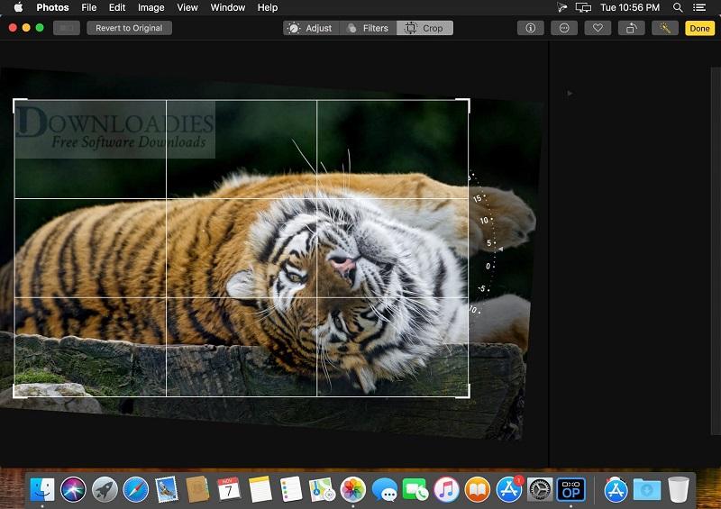 DxO-Optics-11.4.3-Build-70-for-Mac-Free-Downloadies
