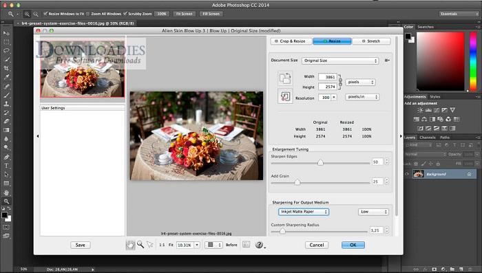 Exposure-Software-Blow-Up-3.1.4.32-for-Mac-Free-Downloadies