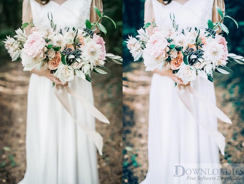 Cool-Tones-Wedding-Presets-LR&PS-for-Mac-Free-Downloadies