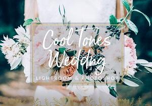Download-Cool-Tones-Wedding-Presets-LR&PS-for-Mac-Downloadies