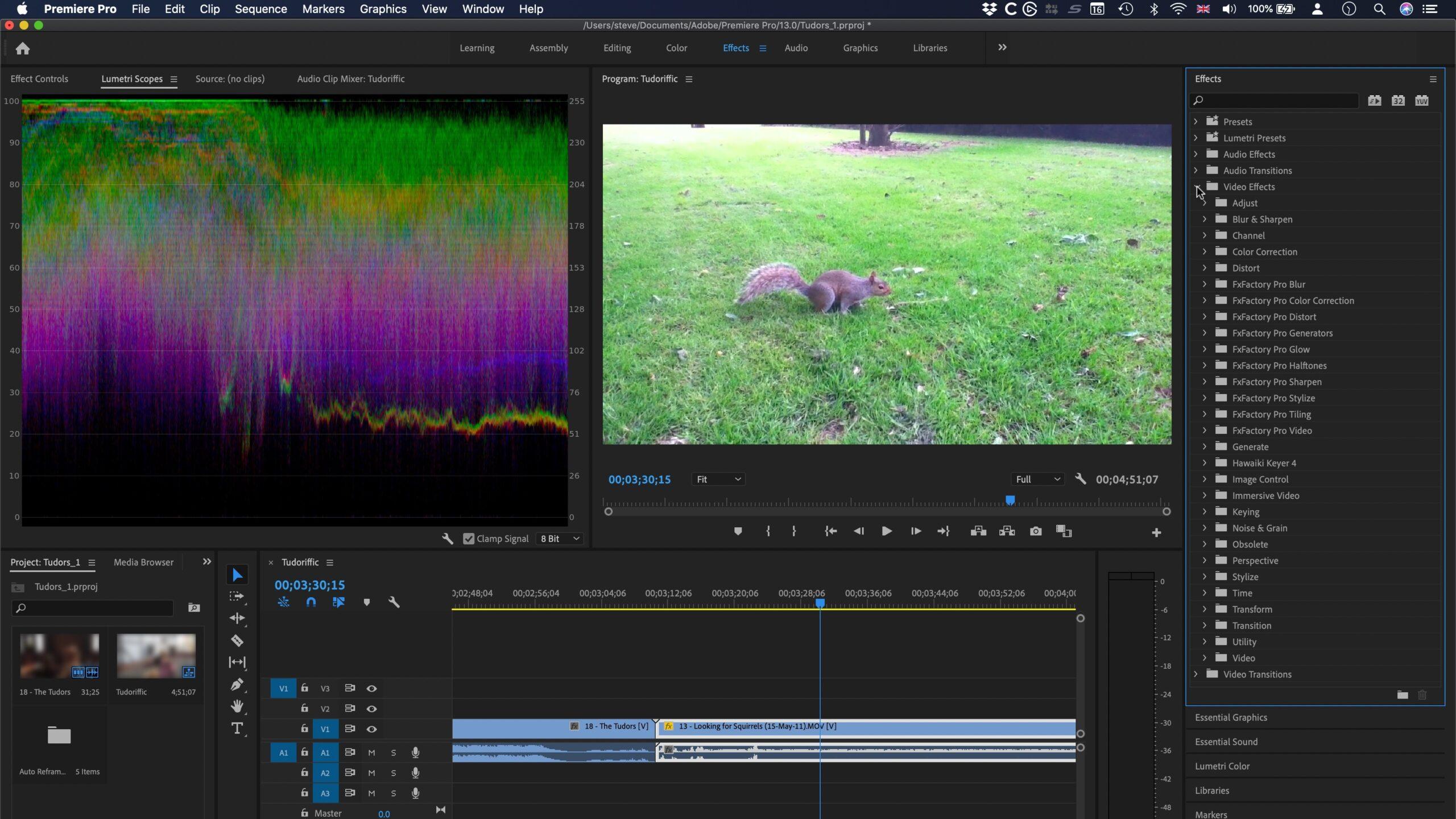 Adobe-Premiere-Pro-2020-for-Mac-Torrent