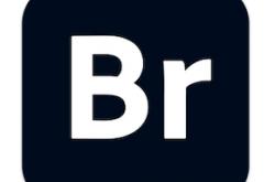 Adobe-Bridge-2021-Free-Download-250x165