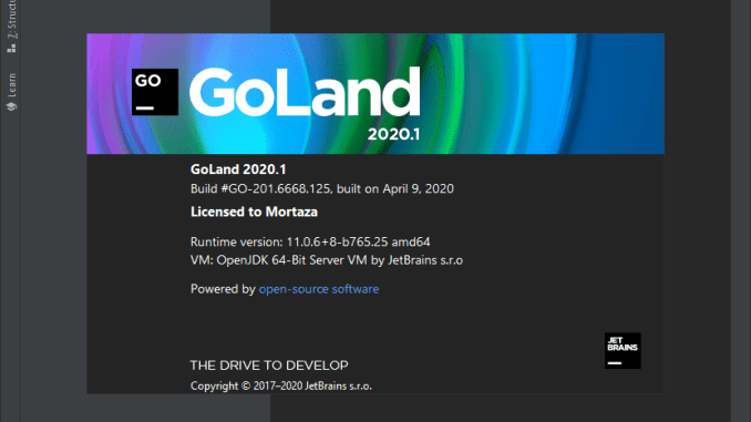 JetBrains-GoLand-2020-for-Mac-Free-Download