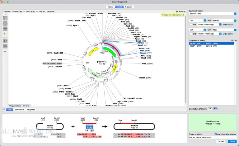 GSL-Biotech-SnapGene-5-for-Mac-Free-Download (1)