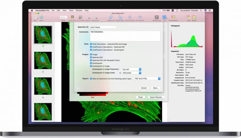 CoLocalizer-Pro-7-for-Mac-Free-Download-768x442